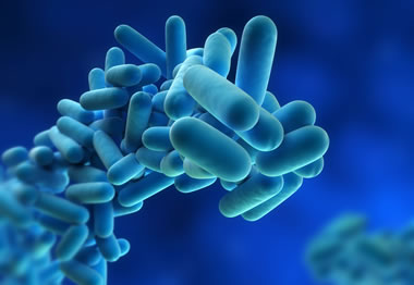 Legionnaires' Disease Outbreaks in 2015 & 2016