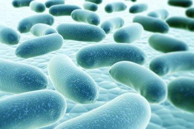 AS 5059 Legionella Control Australia