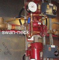 Assessing Legionella Risks - Swan-Necks & Pigtails