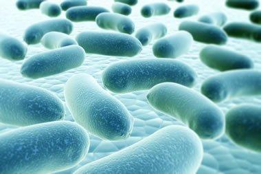 Combating Legionella - Exciting Discovery In Fight Against Legionella